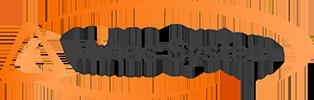 Minas System Logo